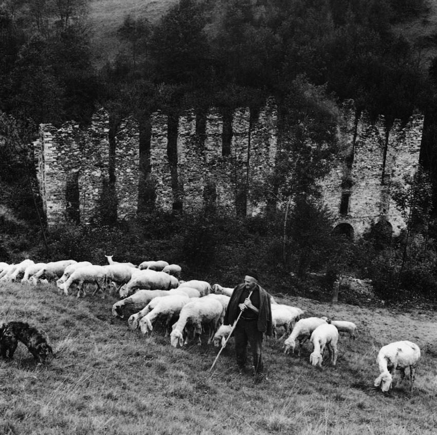 """<b>Pettinengo, la """"Machina brusà"""", ex Maglificio Serra</b><br />foto Alfonso Sella, 1966"""